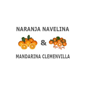 15kg  Mixta Naranjas + Mandarinas