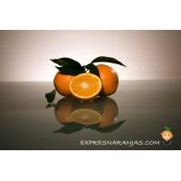 15kg Naranjas de Mesa