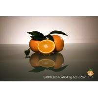 10 kg Naranjas de Mesa